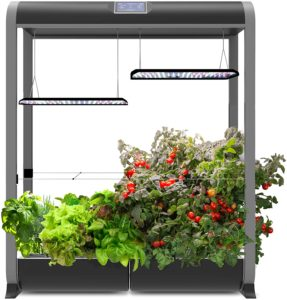 farm24xl Aerogarden Two Peas