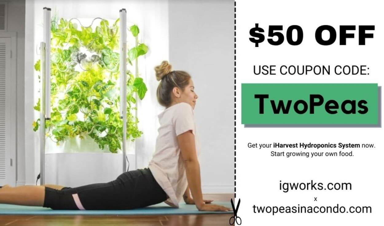 women doing yoga in front of iHarvest with TwoPeas discount code