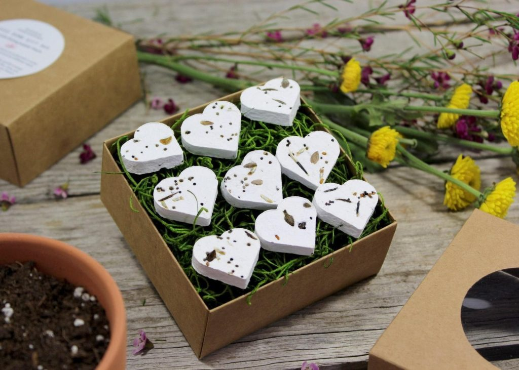 Seed Kit Gift Box