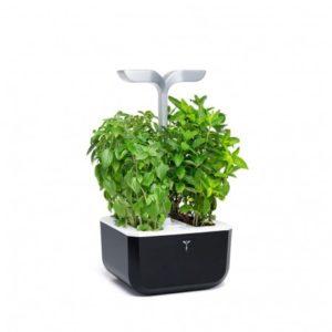 exky-smart-garden