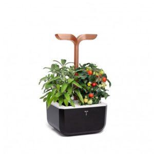 exky-smart-garden-copper