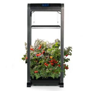 Farm 12XL AeroGarden Two Peas