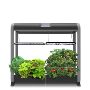 Farm 24 Plus AeroGarden Two Peas