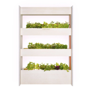 Click and Grow -The Wall Vertical Garden Pic