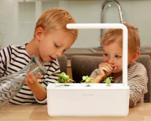 Kids Putting Water in Click and Grow Smart Garden