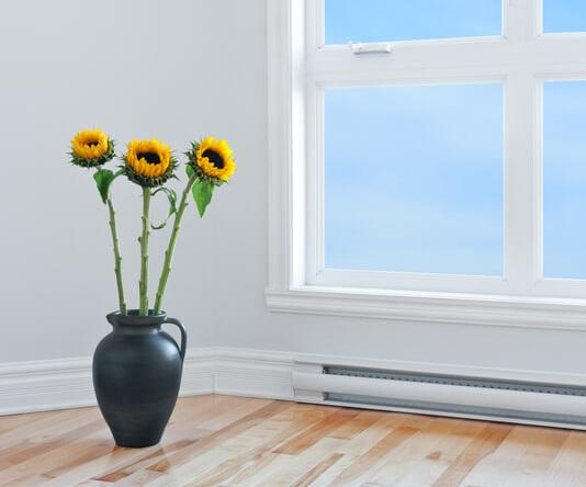 sunflower in a black vase near window sunlight
