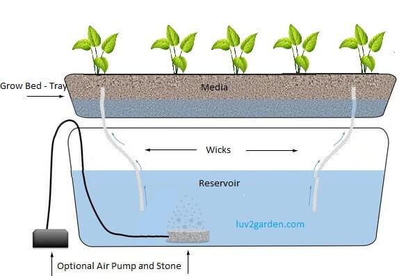 hydroponics wick systems