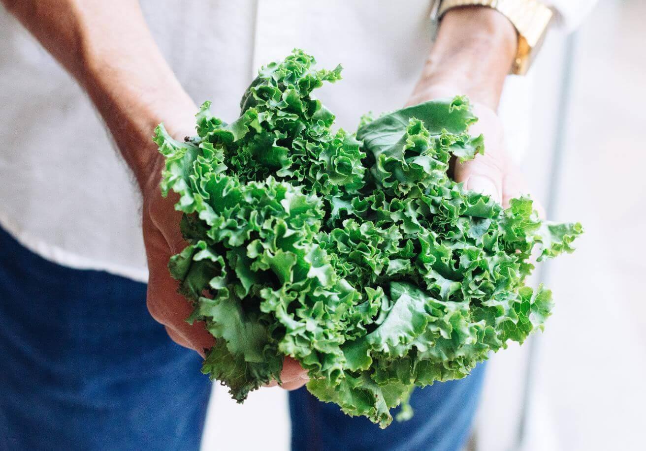 man holding kale