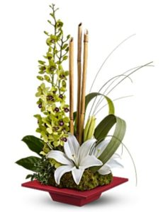 orchid arrangement in a red box plate