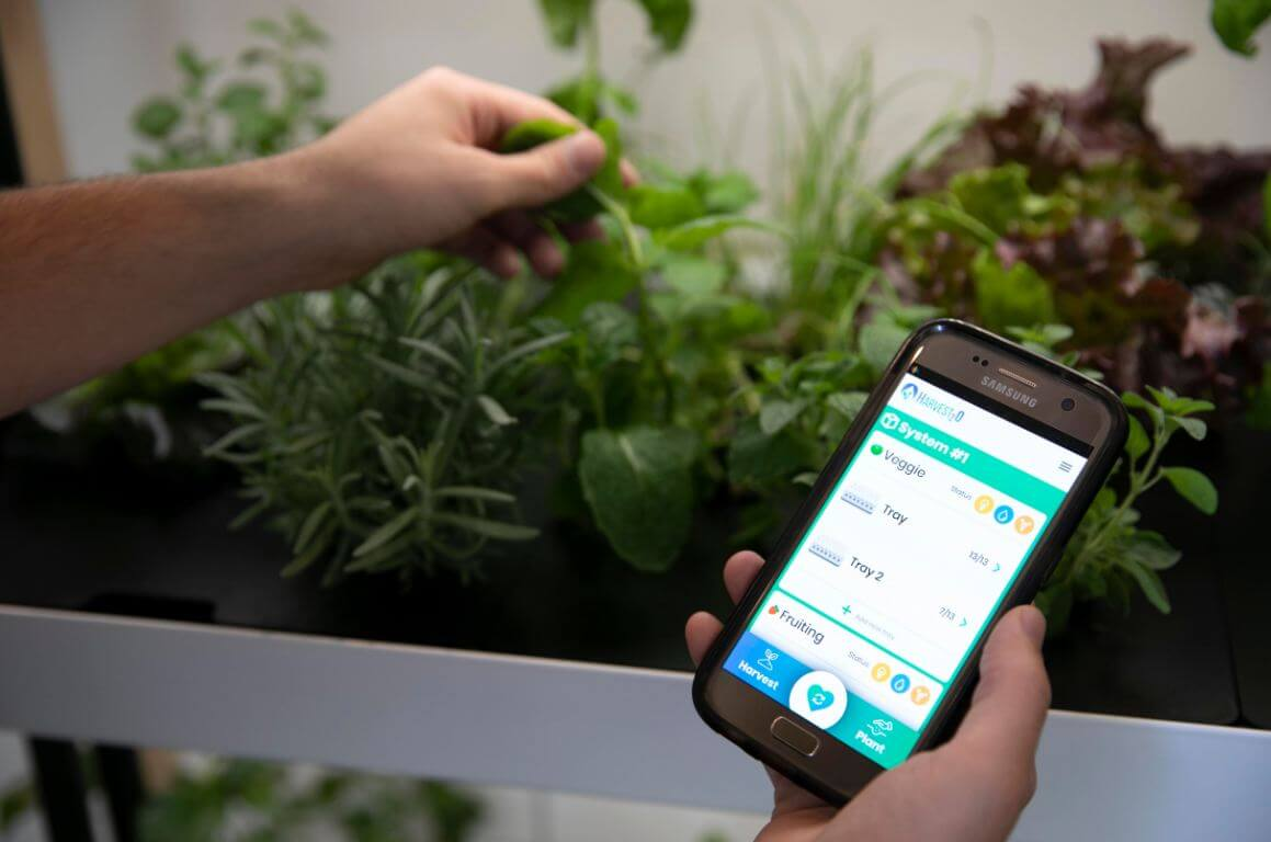 rise garden mobile app