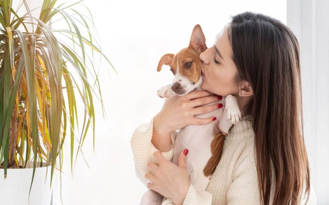 Pet-Friendly Houseplants: Indoor Gardening Guide