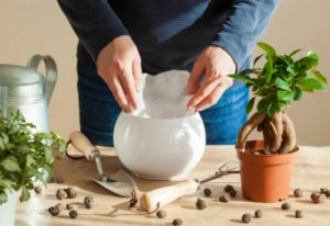 man preparing white pot with leca pebbles