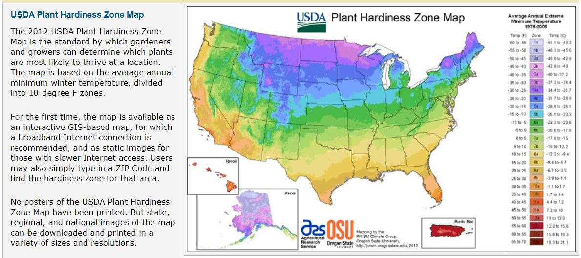 USDA Plant Hardiness Zone screenshot from USDA gov
