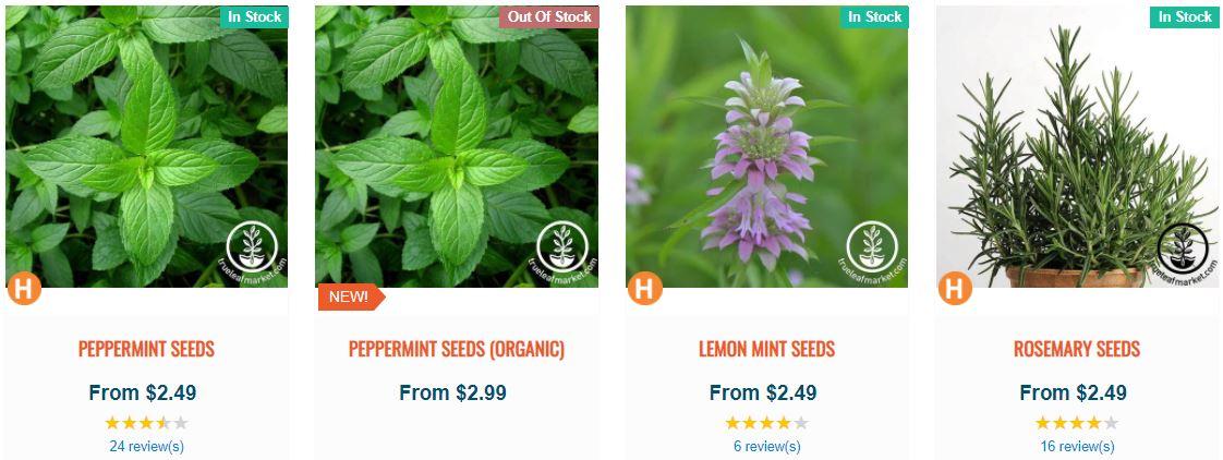 peppermint seeds trueleafmarket