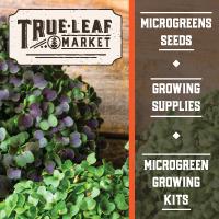 true leaf microgreens
