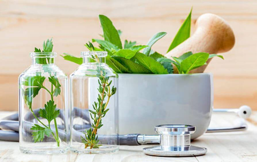 herbs and medicinal leaves in table