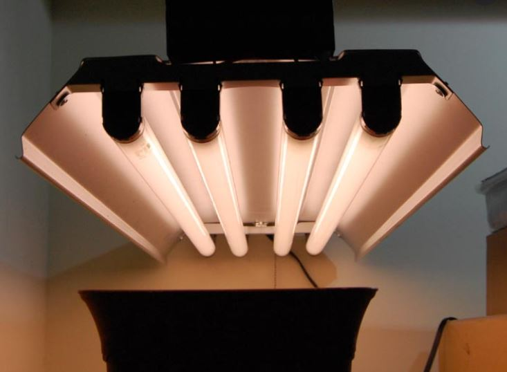 four t5 grow lights fixtures
